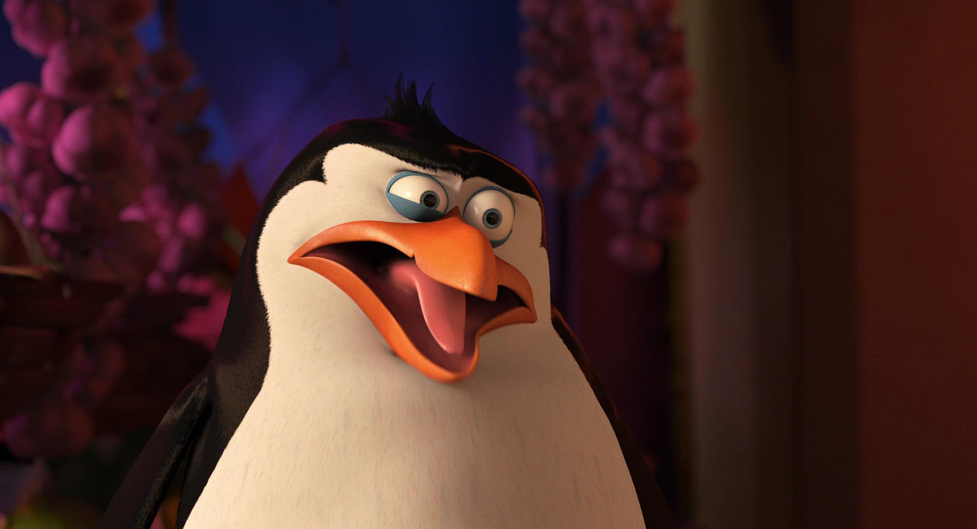 PenguinsOfMadagascar21041080pHRsinkSRsin