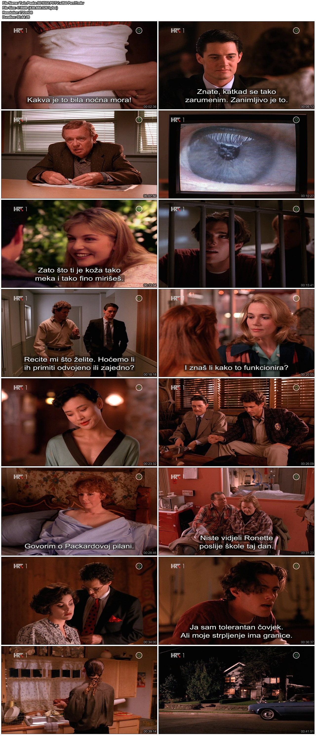 TwinPeaksS01E02PDTVx264-ParnY.png