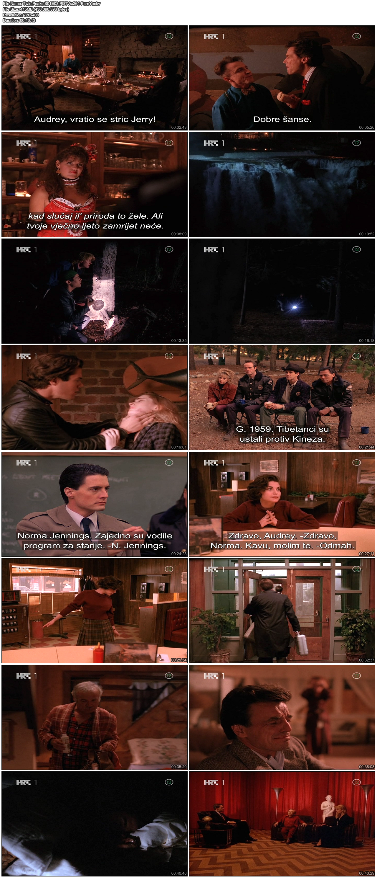 TwinPeaksS01E03PDTVx264-ParnY.png