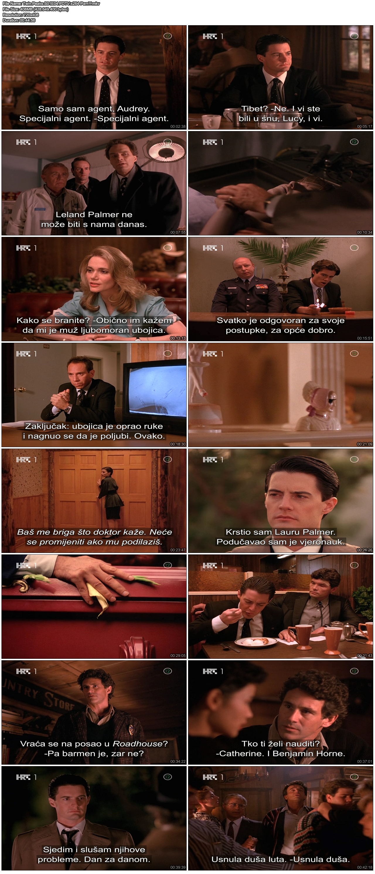 TwinPeaksS01E04PDTVx264-ParnY.png