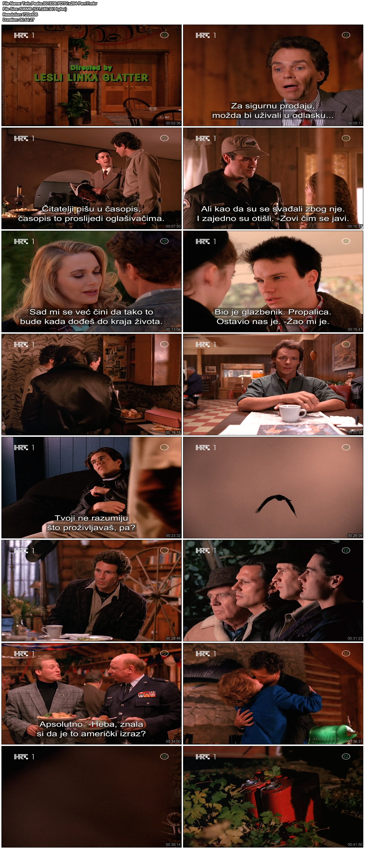 TwinPeaksS01E06PDTVx264-ParnY.png