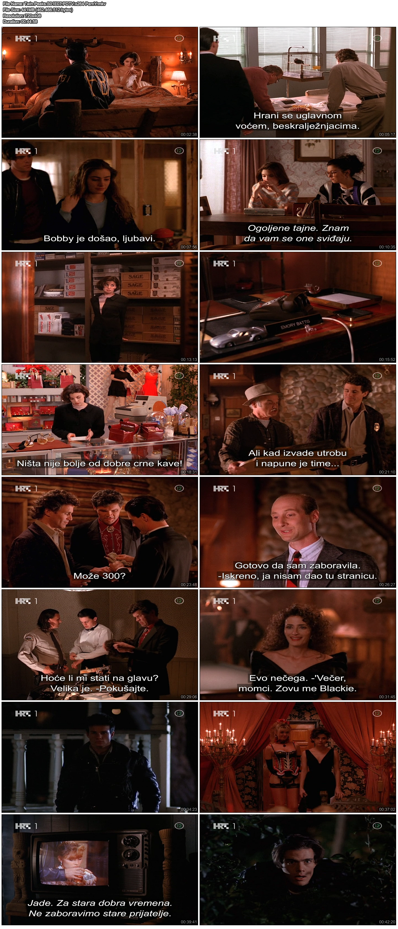 TwinPeaksS01E07PDTVx264-ParnY.png