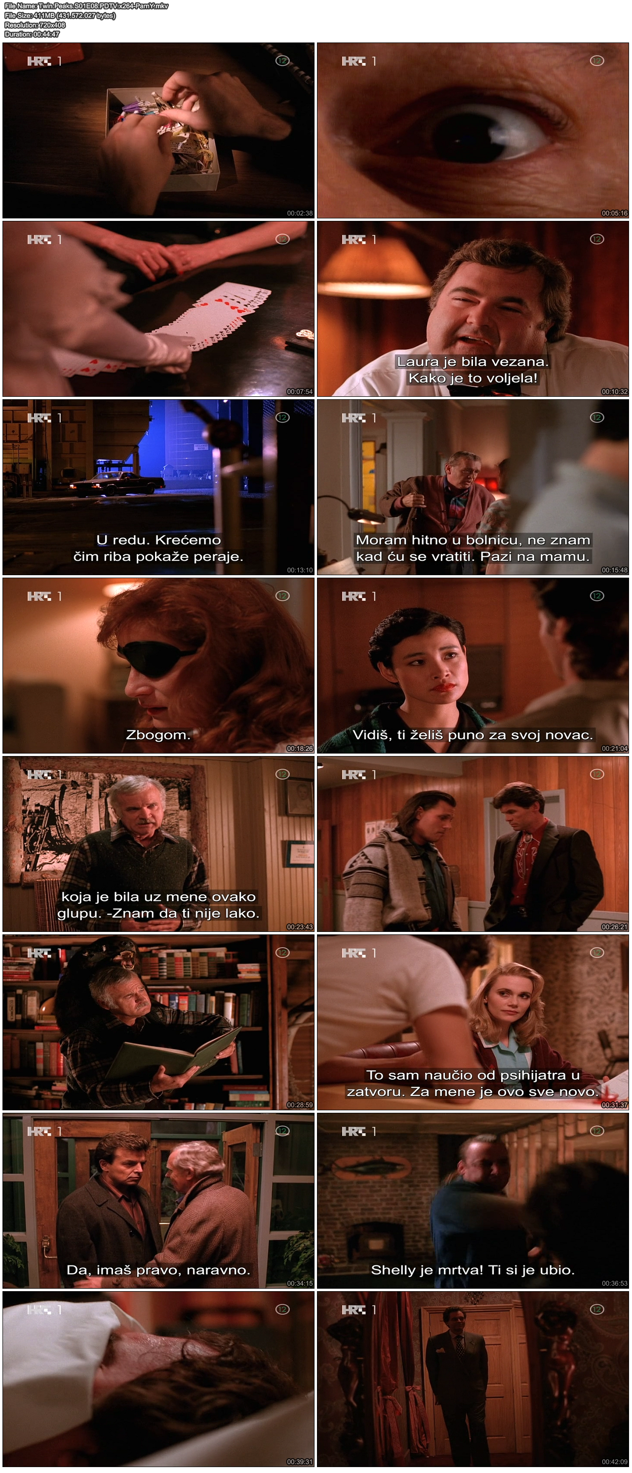 TwinPeaksS01E08PDTVx264-ParnY.png