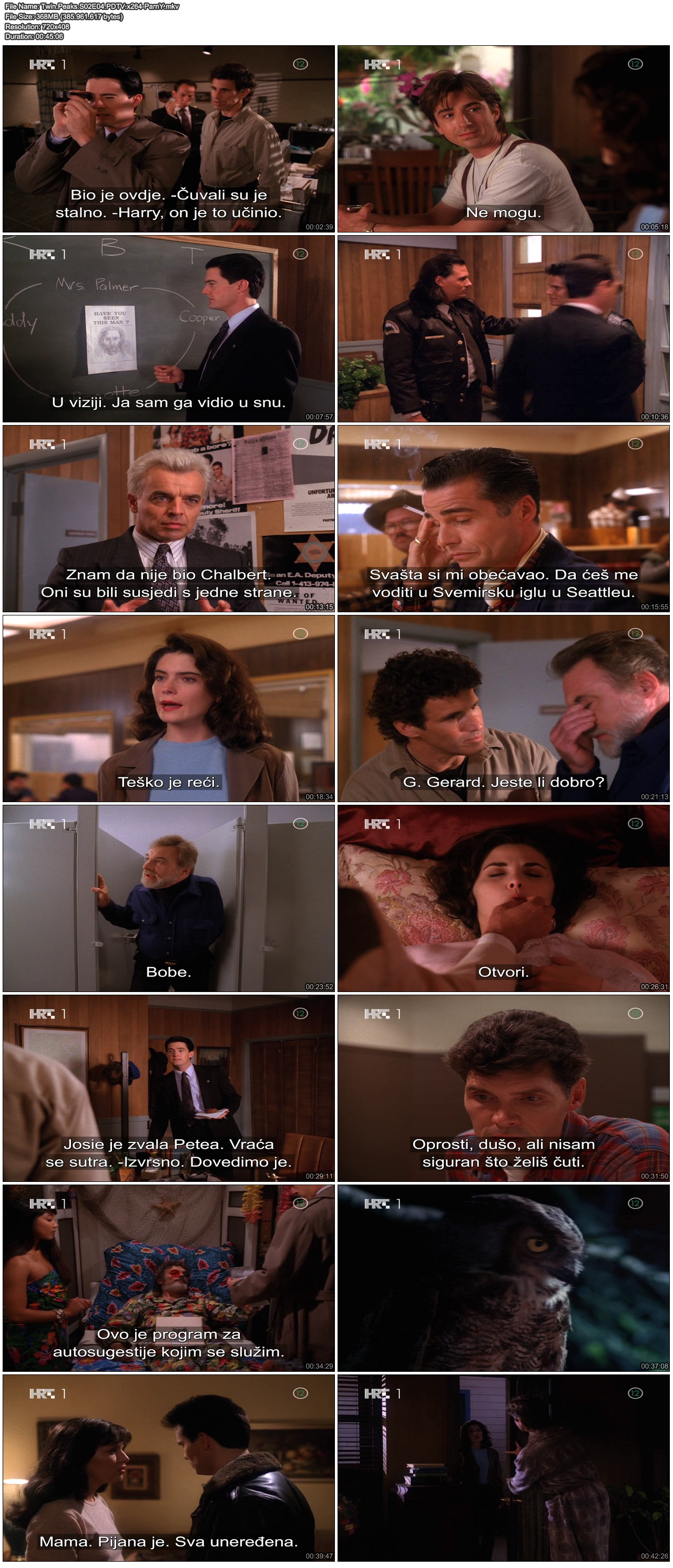 TwinPeaksS02E04PDTVx264-ParnY.png